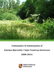 Indsatsplan til bekæmpelse af Kæmpe-Bjørneklo i Høje-Taastrup ...