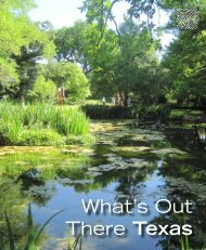 What's Out There Texas - The Cultural Landscape Foundation