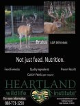 Whitetail Heartbeat of America - Whitetail Deer Farmer - Page 3