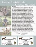 Whitetail Heartbeat of America - Whitetail Deer Farmer - Page 4