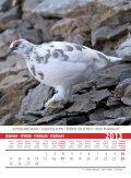 Birds 2013 - Page 5