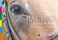 THE IRISH WAY - Horse Racing Ireland