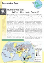 Nuclear waste: Is everything under control? - GRID - UNEP