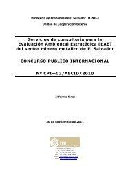 + Evaluación Ambiental Estratégica del sector minero metálico de