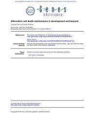 Alternative cell death mechanisms in development and beyond