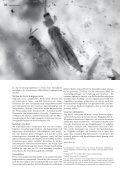 hgk intern die phantasie repariert pro pueblo ecuador der ... - Page 6