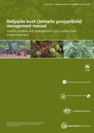 Bellyache bush (Jatropha gossypiifolia ... - Weeds Australia