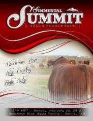 View Simmental Summit Sale Catalog - High Country Cattle