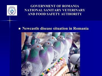 Newcastle disease situation in Romania