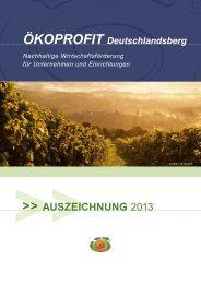 AUSZEICHNUNG 2013 - WIN - Steiermark