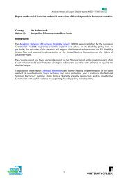 1 Report on the social inclusion and social protection of ... - ANED