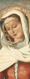 Oracion Mater Admirabilis - 5...