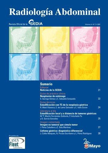 Número 3, Diciembre 2007 - SEDIA