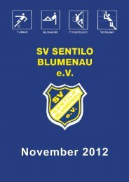 November 2012 - SV Sentilo Blumenau