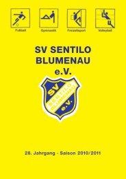 Benefiz - Hallen - Cup 2011 - SV Sentilo Blumenau