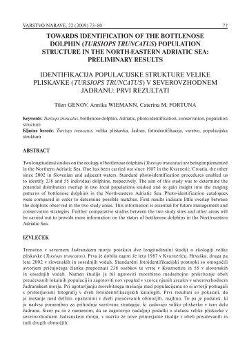 towards identification of the bottlenose dolphin (tursiops truncatus)
