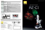 Macro confocal microscope system