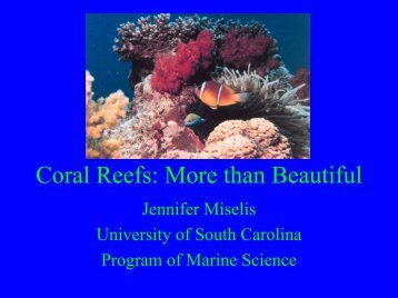Coral Reefs: More Than Beautiful (PDF version) - LFIP