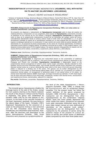REDESCRIPTION OF HYPOPTOPOMA INEXSPECTATA ...