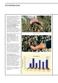 Hydro-Clean.pdf - Rauscher und Holstein - Seite 2