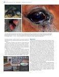 5M IST NEUGEBORENEN - Peter Richterich - Page 3