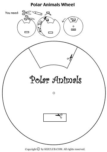 Polar Animals Wheel - Kiz Club