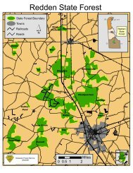 Redden State Forest - Delaware Department of Agriculture - State of ...
