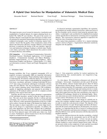 A Hybrid User Interface for Manipulation of Volumetric Medical Data