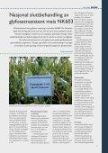 Fosterdiagnostikk og vanskelige valg - Bioteknologinemnda - Page 7