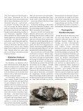 Hiob als Roman - Seite 3
