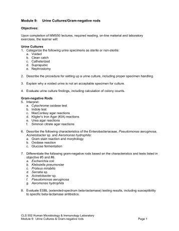 Module 9: Urine Cultures/Gram-negative rods - UNMC