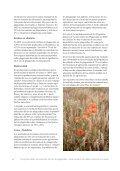 Pesticid pjece spansk tekst.indd - PAN Europe - Page 6
