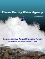 2006 Comprehensive Annual Financial Report (CAFR)