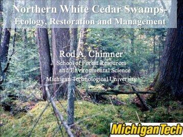 Northern White Cedar Swamps-