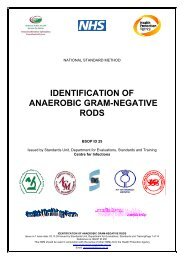 IDENTIFICATION OF ANAEROBIC GRAM-NEGATIVE RODS