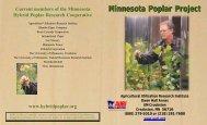 Hybrid Poplar brochure legal size.pdf - AURI