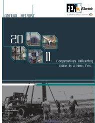 2011 Annual Report - FEM Electric Association, Inc.