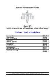 Niere - Samuel-Hahnemann-Schule