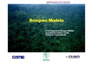 Bosques Modelo - SIGAM