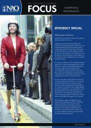 Full report (pdf - 293KB) - National Audit Office