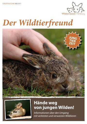 broschure-jungtiere-pdf - Tierhilfe Ostholstein