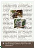 broschure-jungtiere-pdf - Tierhilfe Ostholstein - Seite 4