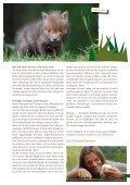 broschure-jungtiere-pdf - Tierhilfe Ostholstein - Seite 5