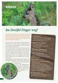broschure-jungtiere-pdf - Tierhilfe Ostholstein - Seite 6