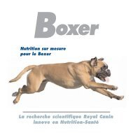 Brochure Prestige - Breed Nutrition - Royal Canin