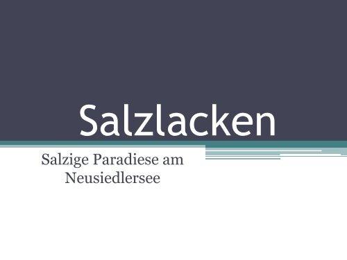 Salzige Paradiese am Neusiedlersee - GRG23 Alterlaa
