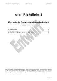 OIB-Richtlinie 1