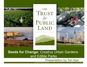 Seeds for Change: Creative Urban Gardens and Edible Parks