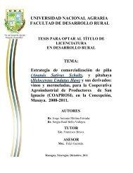 Estrategia de comercialización de piña - Centro Nacional de ...