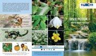 Divji potok - Zavod RS za varstvo narave
